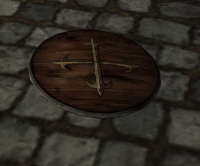 A Medium wooden shield