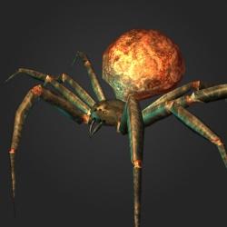 250px-Lava_spider.jpg